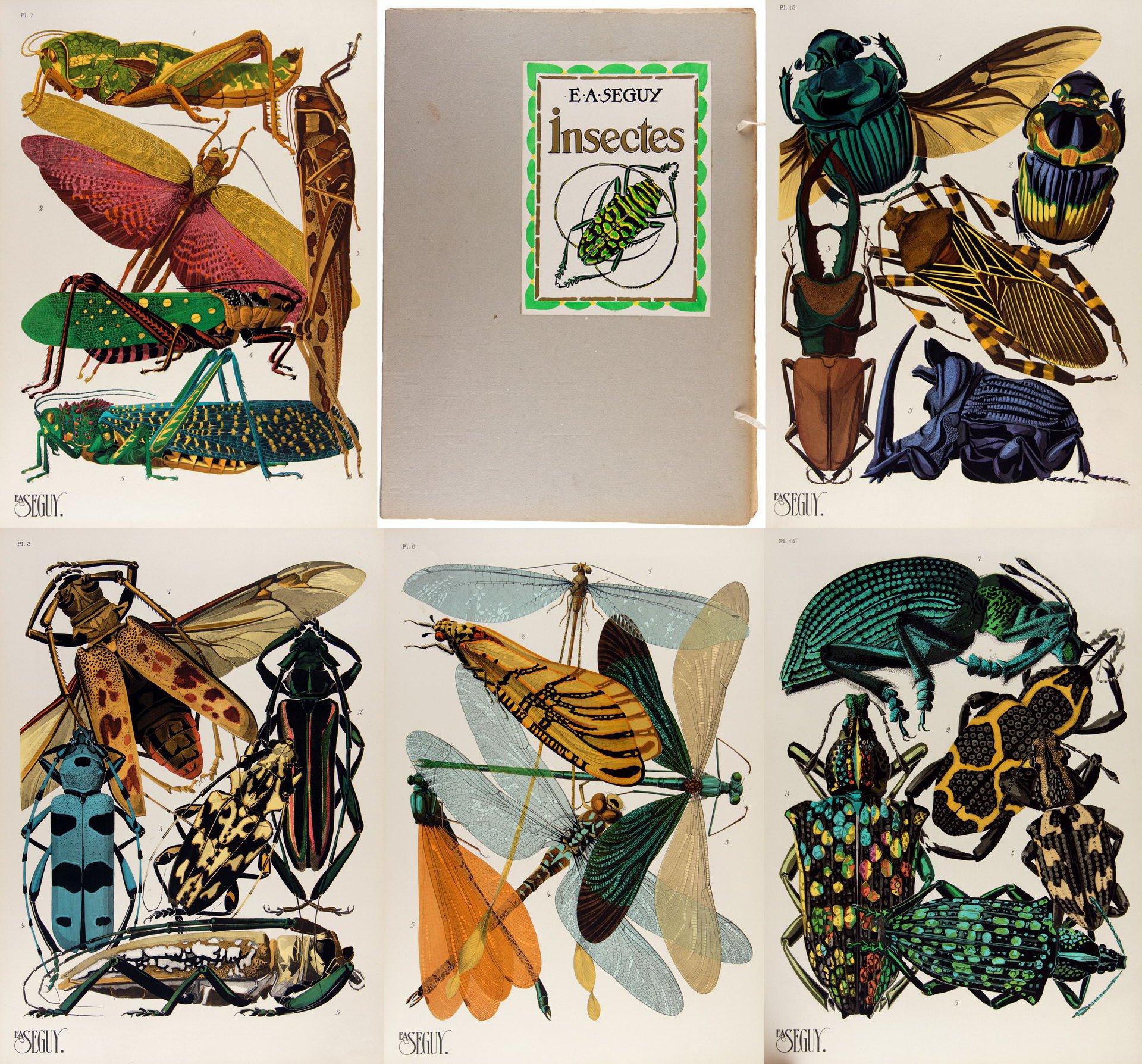 1926-EMILE-ALLAIN-SEGUY-INSECTES-ART-DECO-EDITION-ORIGINAL
